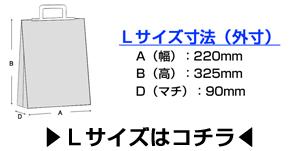 保冷袋 ウツヰミラクルパック アイスクリーム袋L